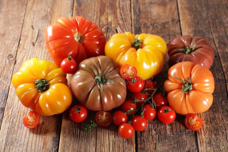 Färgfyllda tomater arkivfoton