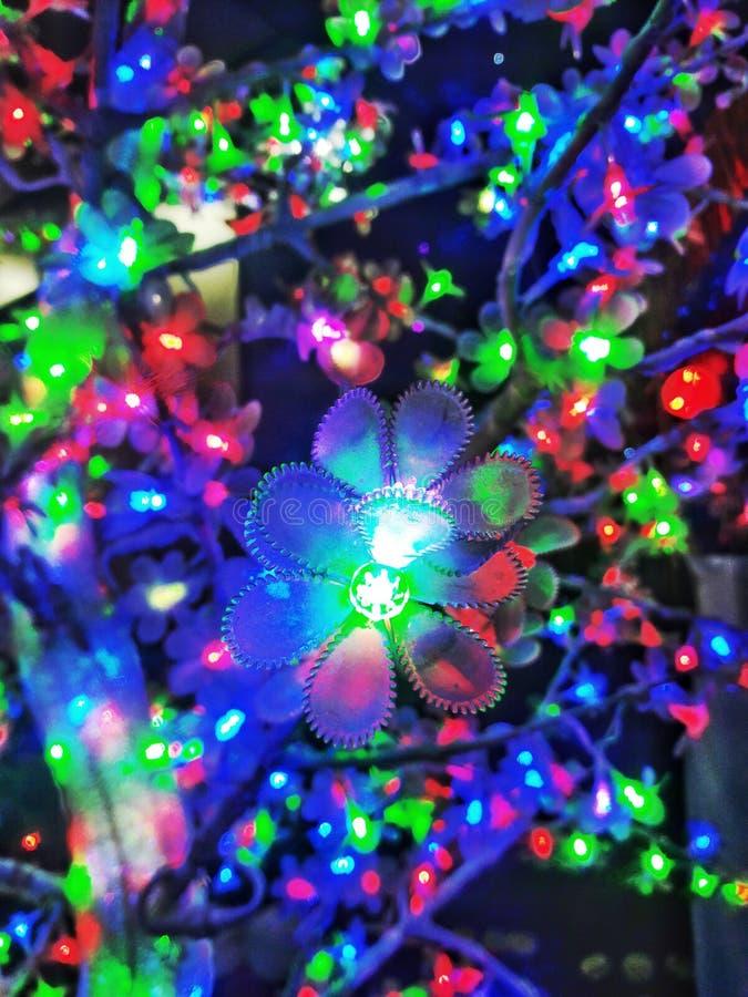 Färgglad belysning arkivfoto