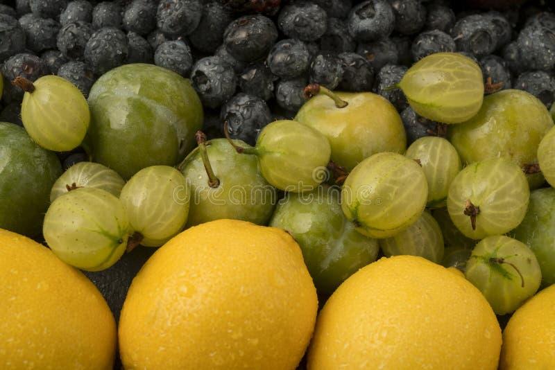 färgglad frukt royaltyfri foto
