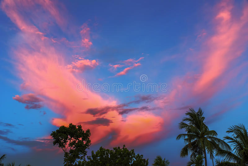färgglad sky royaltyfri bild