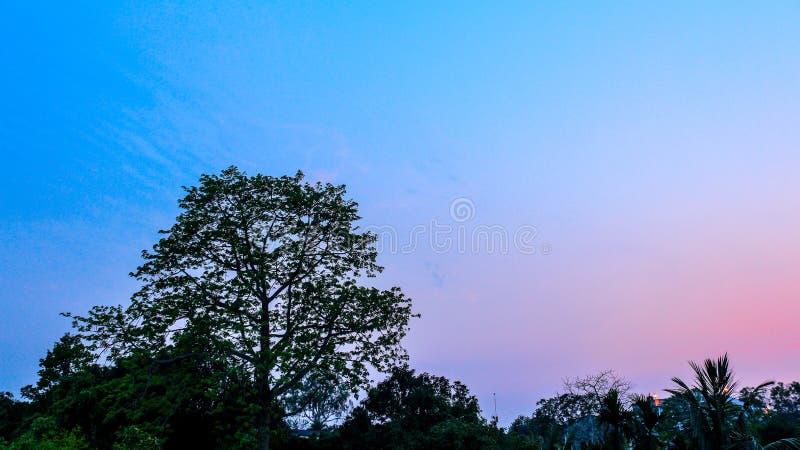 Färgglad solnedgånghimmel royaltyfri foto