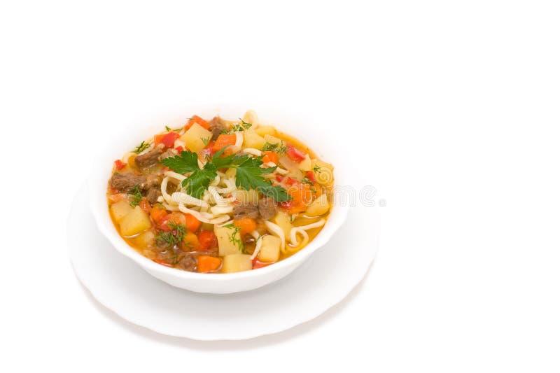 Färgglad soup arkivbilder