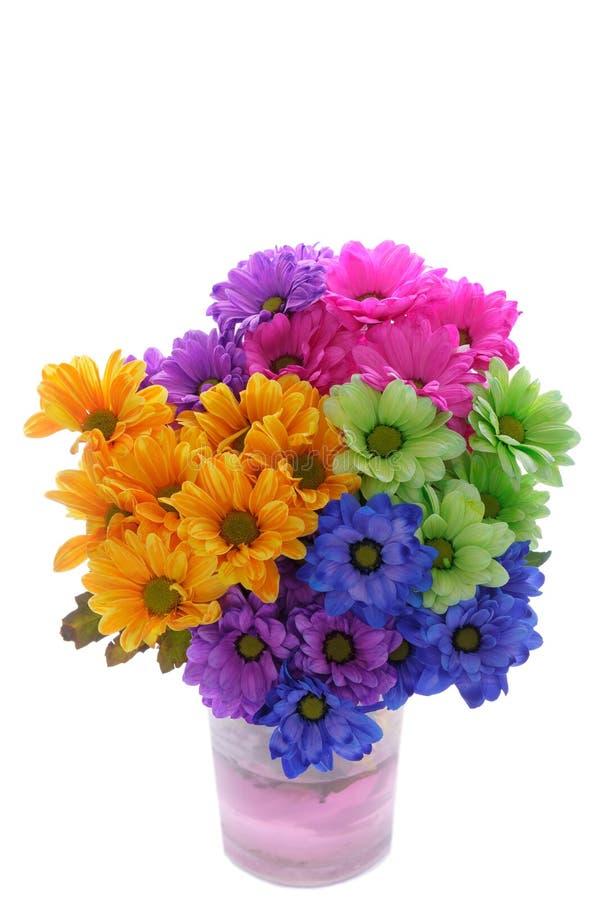 färgglada blommor arkivbild