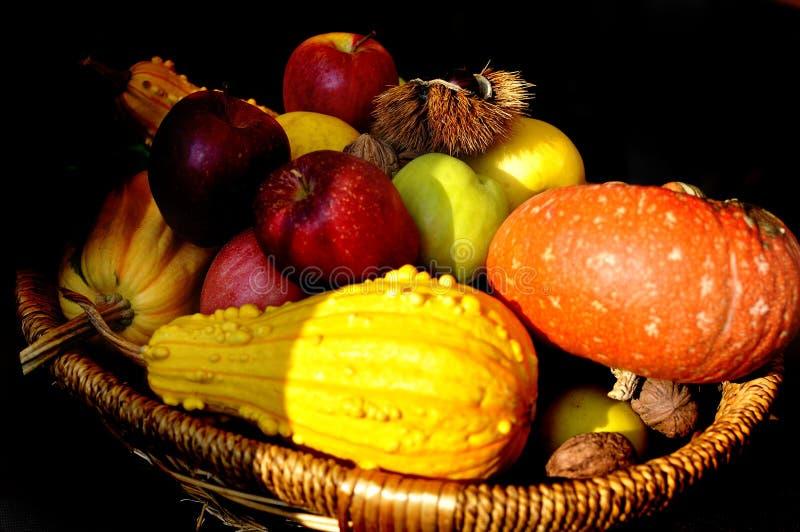 Färgglade äpplen, muttrar och pumpa i en träkorg som isoleras på svart bakgrund - höststilleben arkivfoton