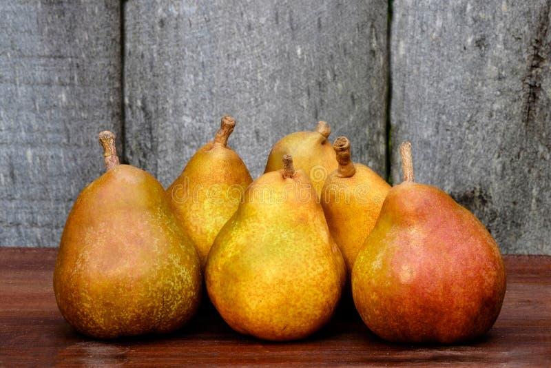 Färgglade Autumn Harvest Pears arkivfoton