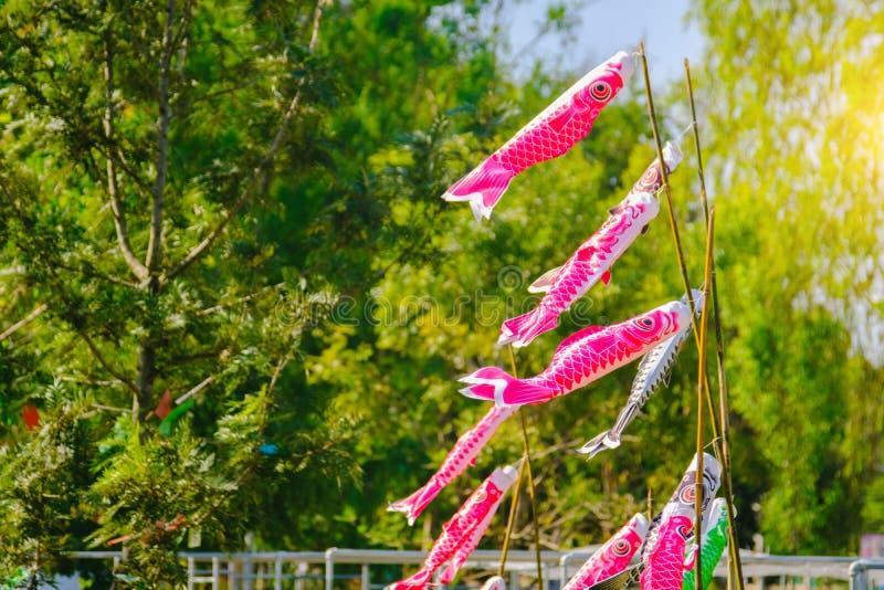Färgglade karpbanderoller eller Koinobori fladdrande royaltyfri fotografi