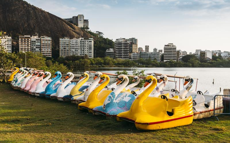 Färgglade pedal-fartyg svanar bredvid Lagoa Rodrigo de Freitas, Rio de Janeiro, Brasilien på solnedgången arkivfoton