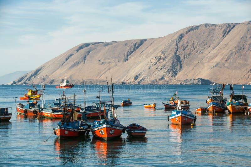 Färgglade träfiskebåtar, Iquique, Chile royaltyfri foto