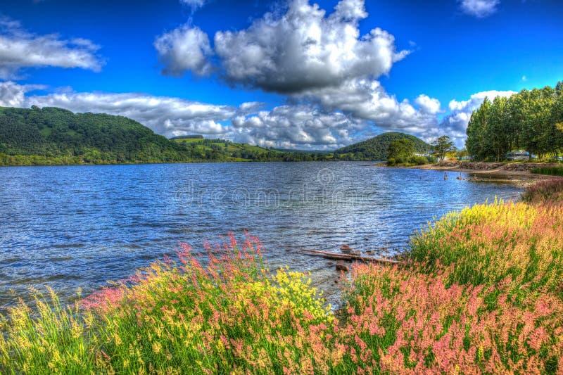 Färgglade vasser och gräs vid Ullswater sjöområdet Cumbria England UK med cloudscape HDR royaltyfri bild