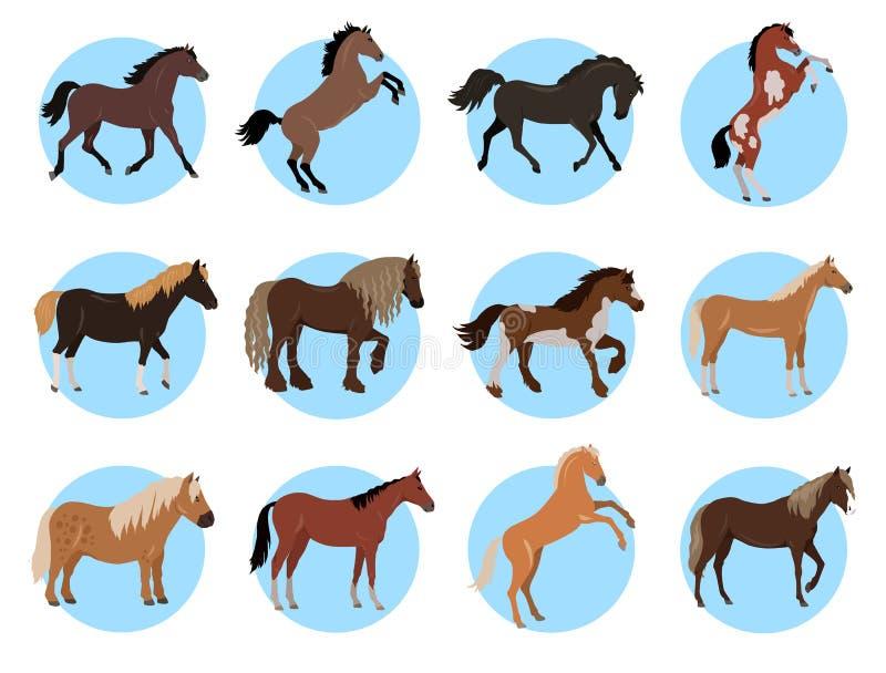 Färgglat baner för hästar i blåttcirklar på vit royaltyfri illustrationer