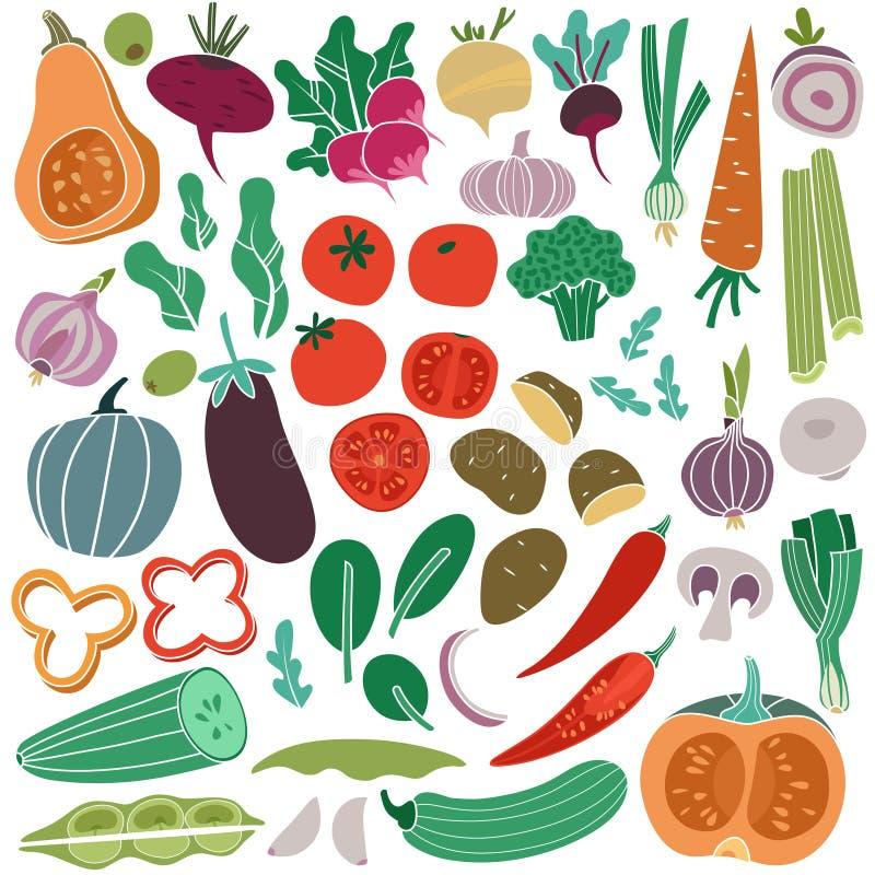 Färggrönsaker räcker dragit Aubergine för potatis för tomat för morotlökgurka För målmat för strikt vegetarian isolerad sund grön royaltyfri illustrationer