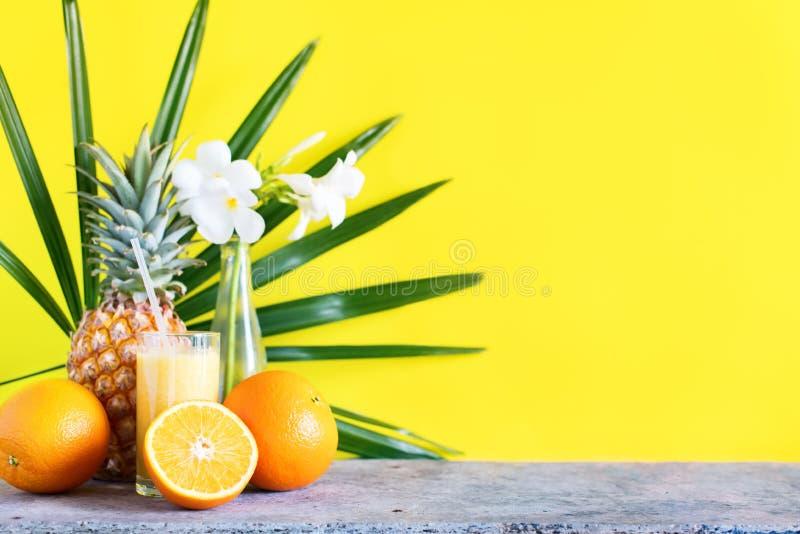 FärgJuice Smoothie Glass Straw Tropical frukter royaltyfri bild