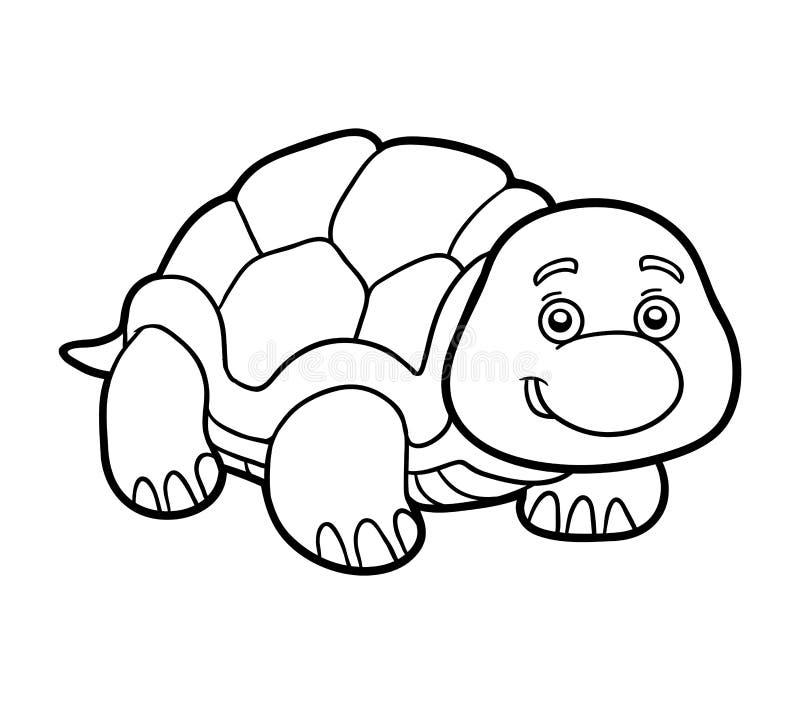 Färgläggningbok, färgläggningsida (sköldpaddan) vektor illustrationer