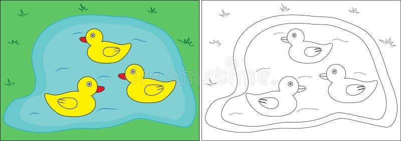 Färgläggningbok för barn Änder på dammet, tecknad film vektor vektor illustrationer