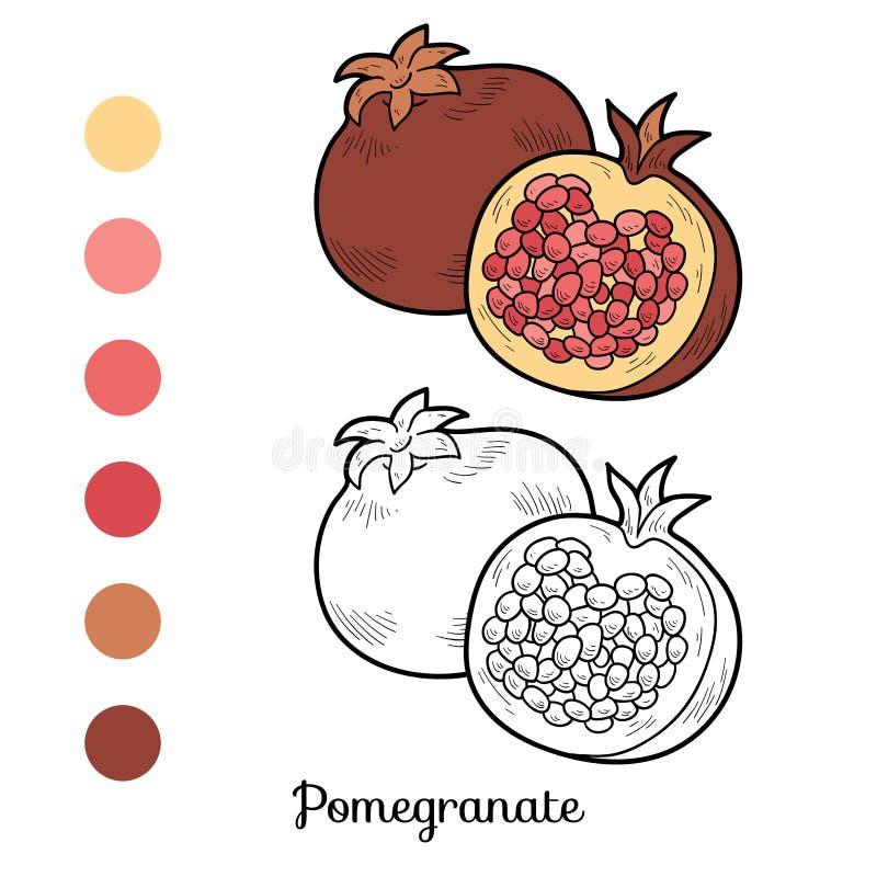 Färgläggningbok: frukter och grönsaker (granatäpple) vektor illustrationer