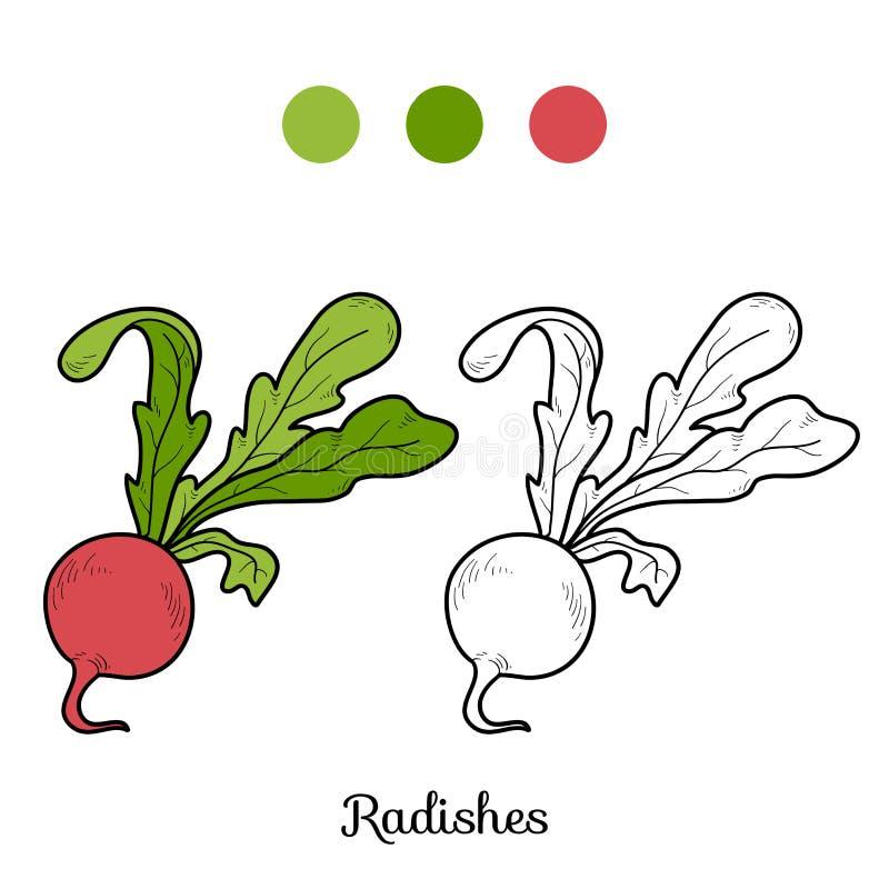 Färgläggningbok: frukter och grönsaker (rädisor) royaltyfri illustrationer