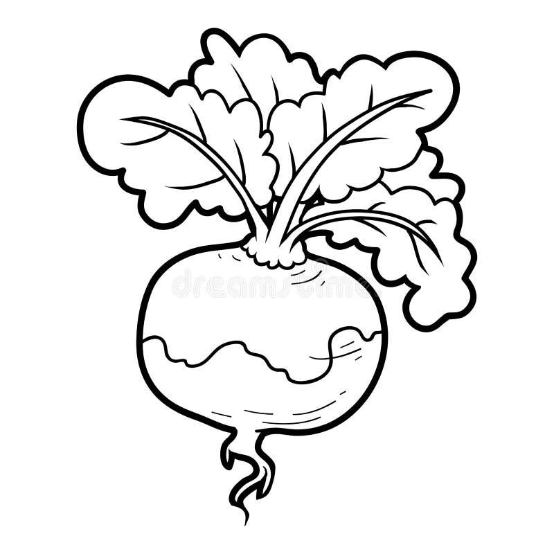 Färgläggningbok, grönsaker, rova stock illustrationer