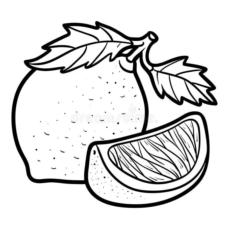 Färgläggningbok, limefrukt royaltyfri illustrationer
