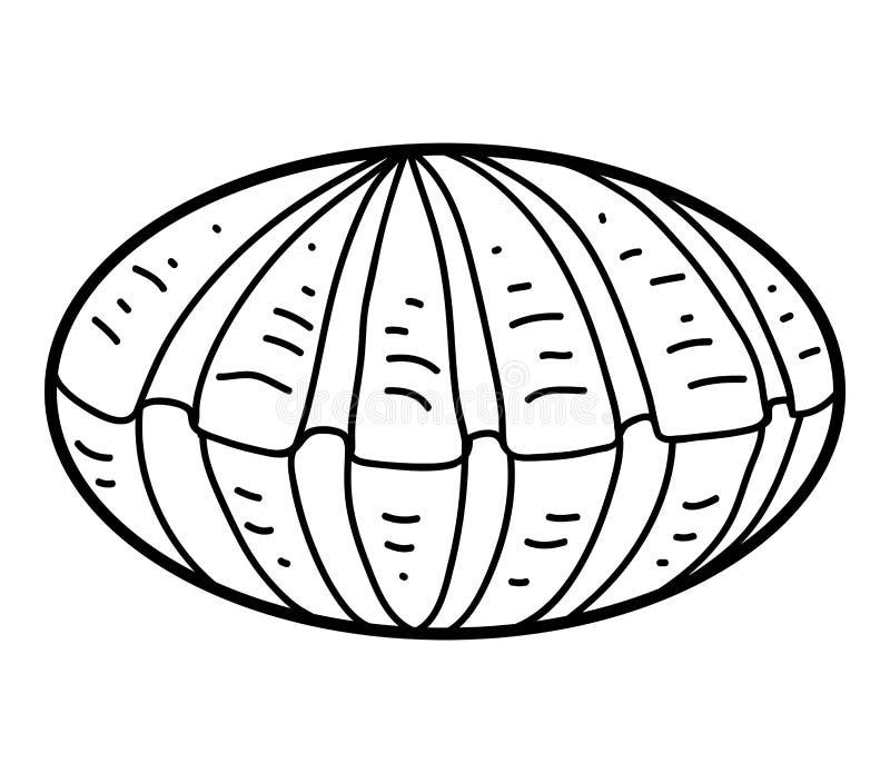 Färgläggningbok, Shell royaltyfri illustrationer