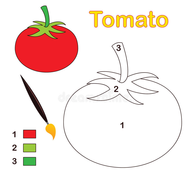 färgnummertomat vektor illustrationer