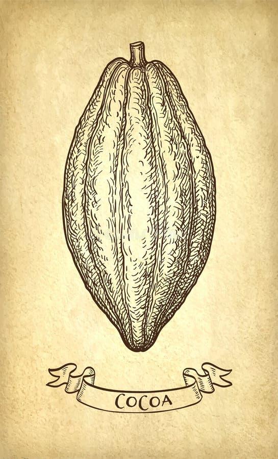 Färgpulver skissar av kakao stock illustrationer