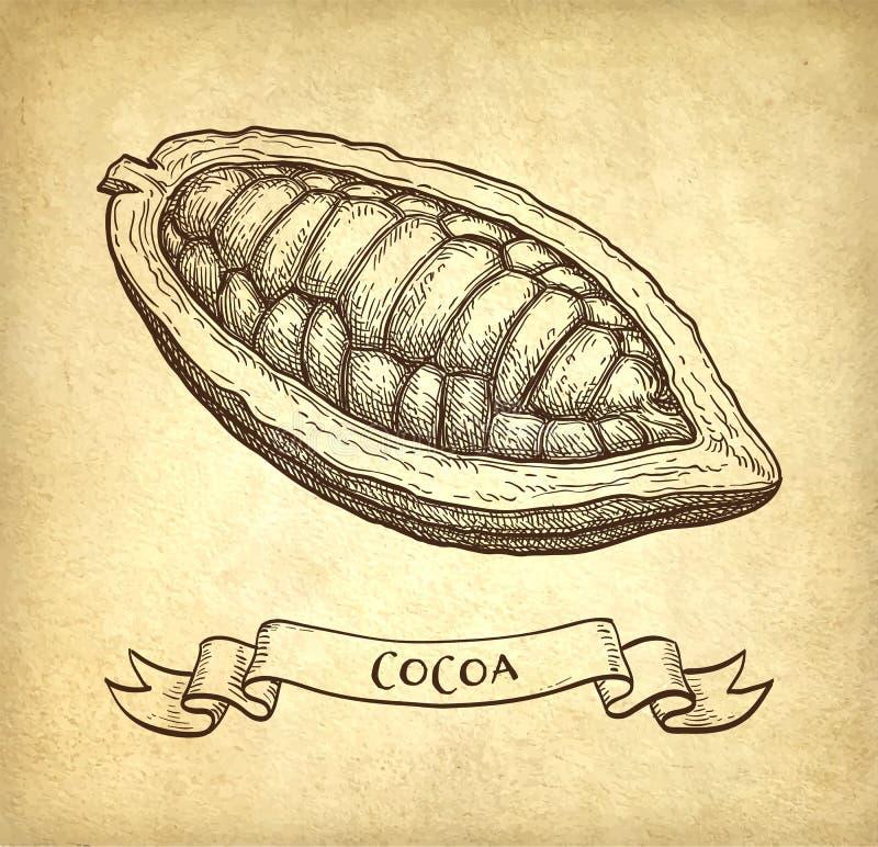 Färgpulver skissar av kakao royaltyfri illustrationer