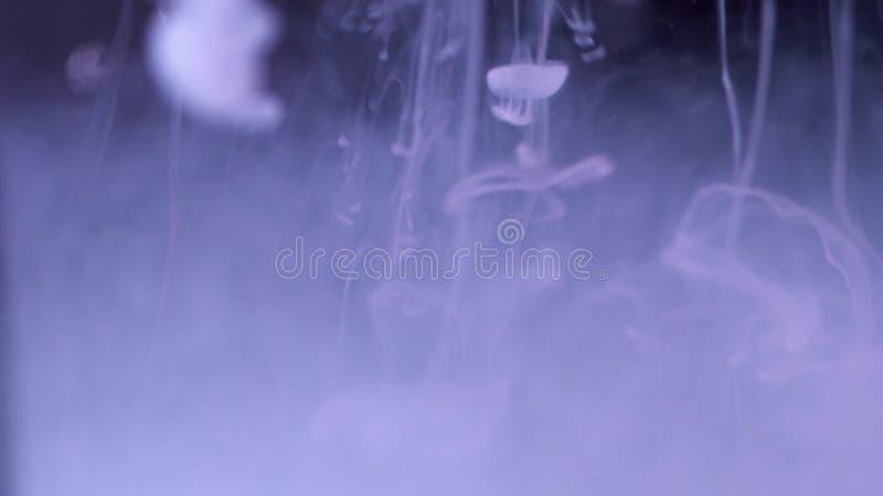 Färgpulverfärgstänk i vatten Närbild av abstrakt bakgrund av vitt färgpulver som faller in i vatten på svart bakgrund Effekt av arkivbilder