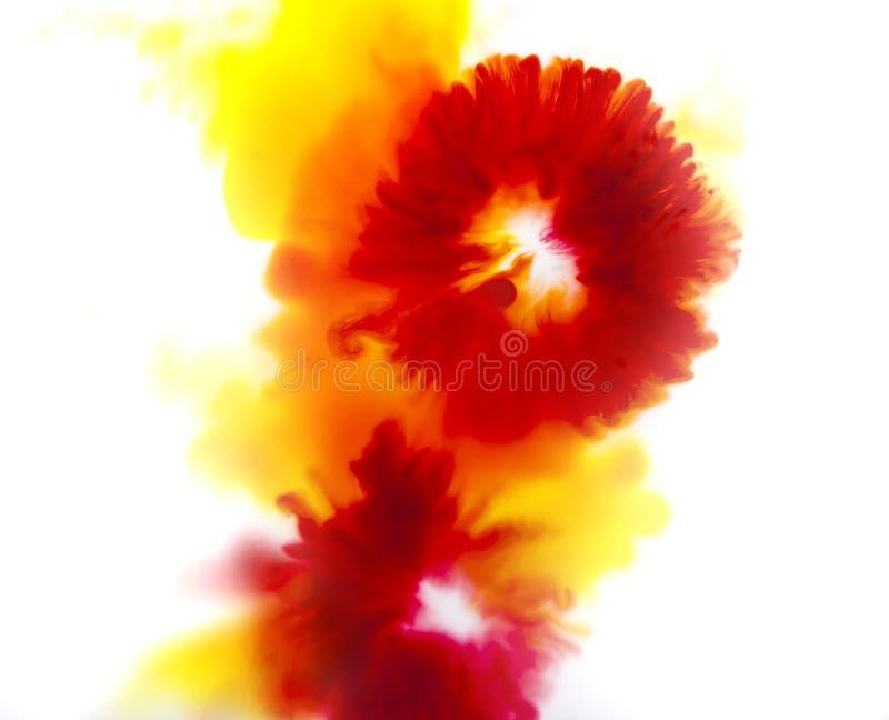 Färgrik abstrakt bakgrund av blommabegreppet, rött och gult arkivbild