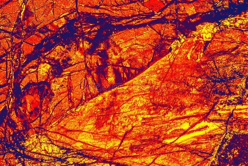 Färgrik abstrakt modell av mineral i en polariserande micrograph royaltyfri bild