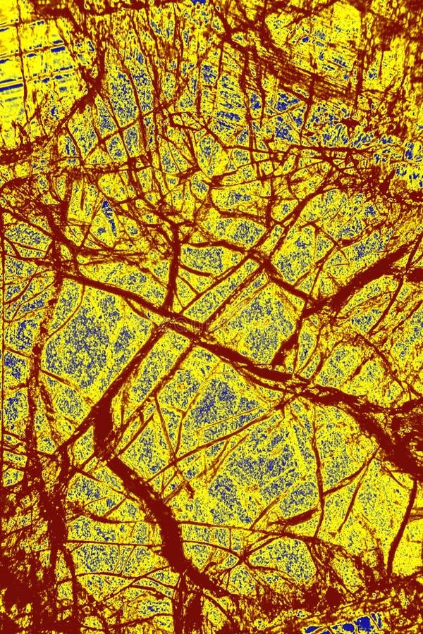 Färgrik abstrakt modell av mineral i en polariserande micrograph arkivbild