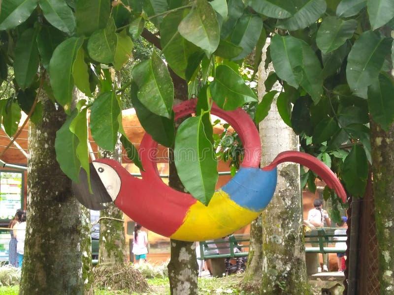 Färgrik ara som göras med ett gummihjul fotografering för bildbyråer