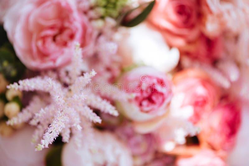 Färgrik bakgrund för suddiga blommor royaltyfri foto
