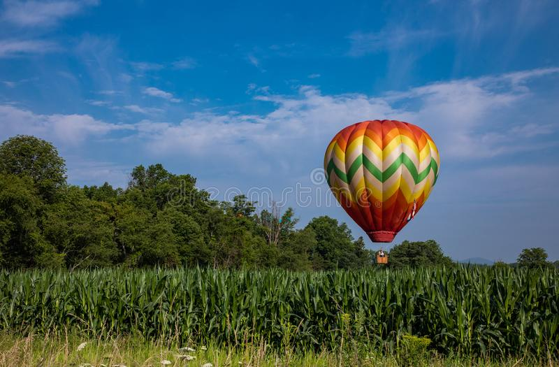 Färgrik ballong för varm luft över havrefält på Sunny Day med träd och molnig blå himmel royaltyfri bild