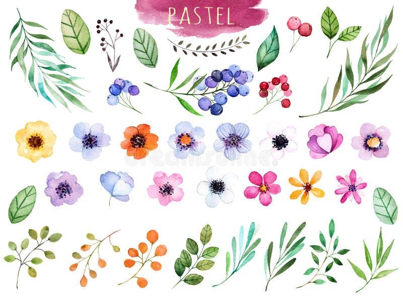 Färgrik blom- samling med mångfärgade blommor royaltyfri illustrationer