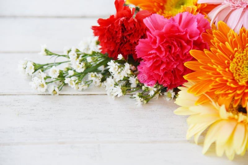 Färgrik blomma för ny för vårsommarblommor som för ram för sammansättning för tropisk växt krysantemum för gerbera är olik på vit fotografering för bildbyråer