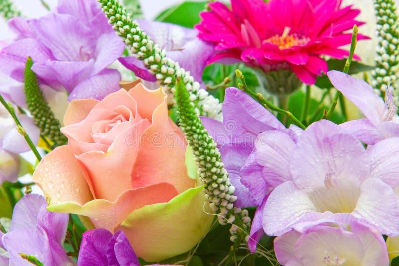 Färgrik blommabukett. royaltyfria foton