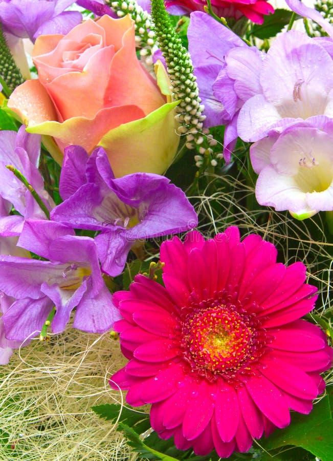 Färgrik blommabukett. royaltyfria bilder
