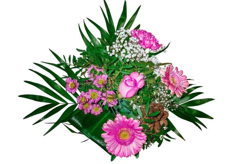 Färgrik blommabukett som isoleras på vit bakgrund closeup fotografering för bildbyråer
