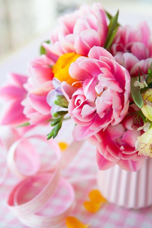 färgrik blommafjäder royaltyfri bild