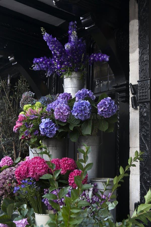 färgrik blommavariation arkivfoto