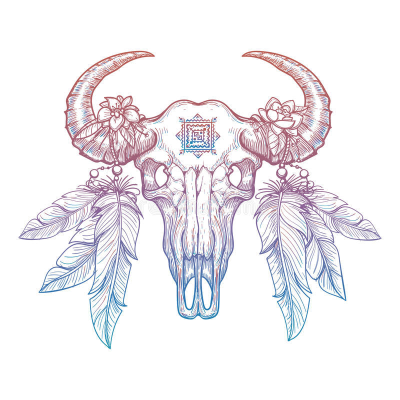 Färgrik buffelskalle royaltyfri illustrationer