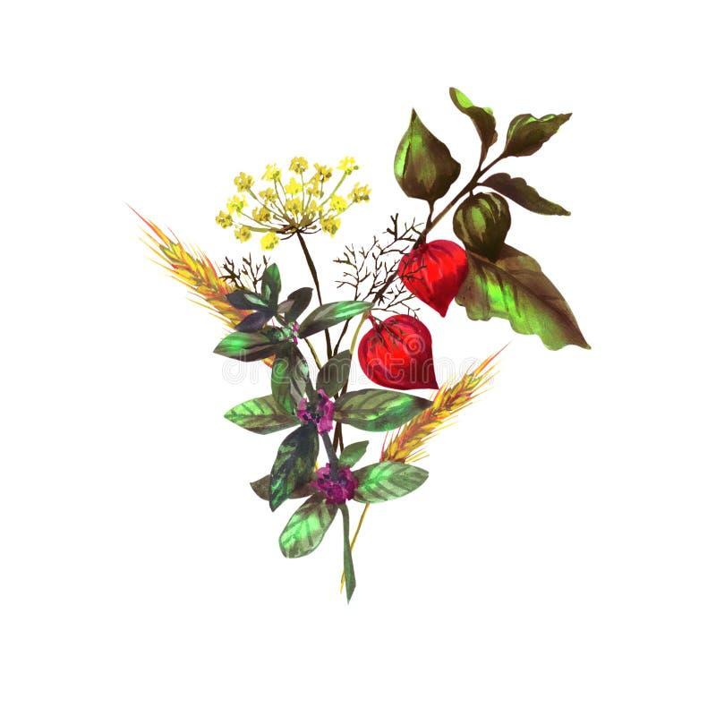 Färgrik bukett med örter och blommor royaltyfri illustrationer