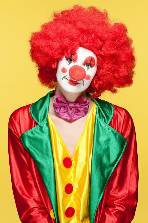 färgrik clown royaltyfri foto