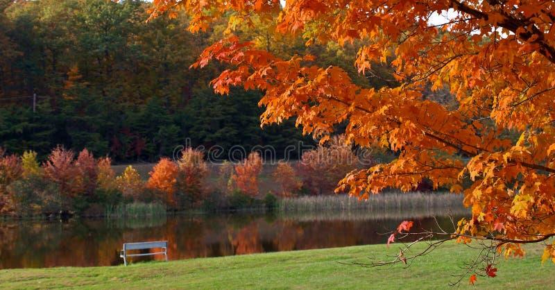 färgrik dag fotografering för bildbyråer