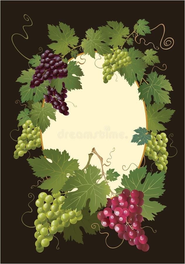 färgrik dekorativ druva royaltyfri illustrationer