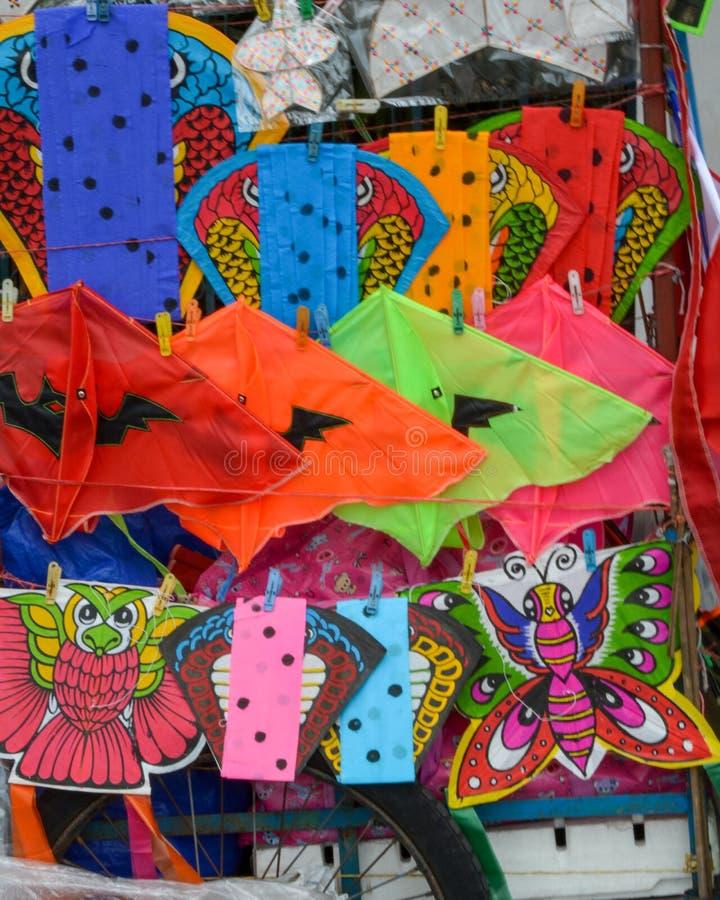 Färgrik drake på hylla med många stil arkivfoto