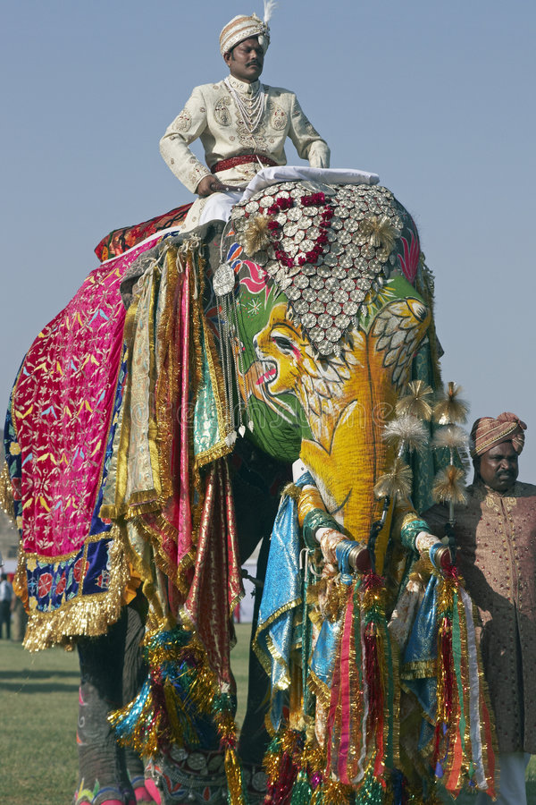 färgrik elefant royaltyfria foton