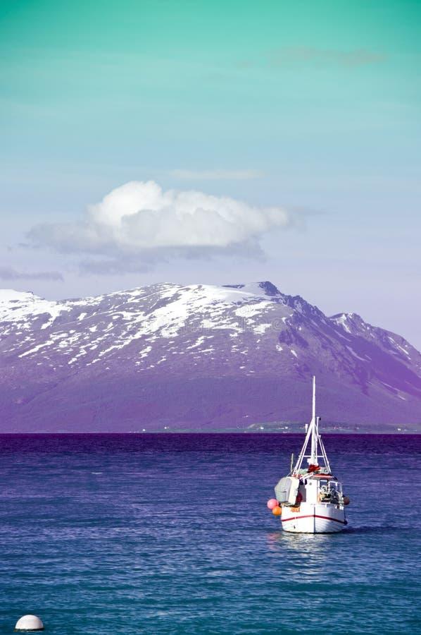 färgrik fjord royaltyfri fotografi