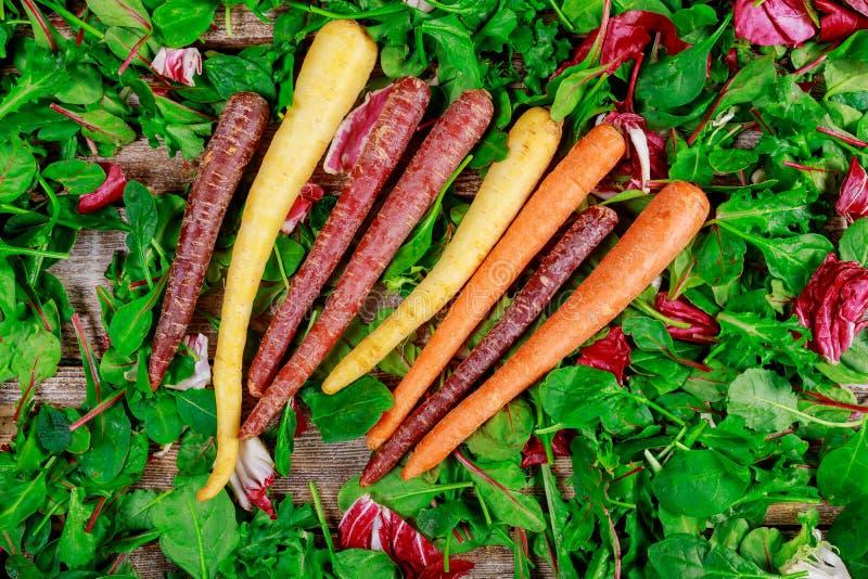 Färgrik flerfärgad apelsin, purpurfärgade röda morötter på för sidagrönsallat för blandning ny sallad royaltyfria foton