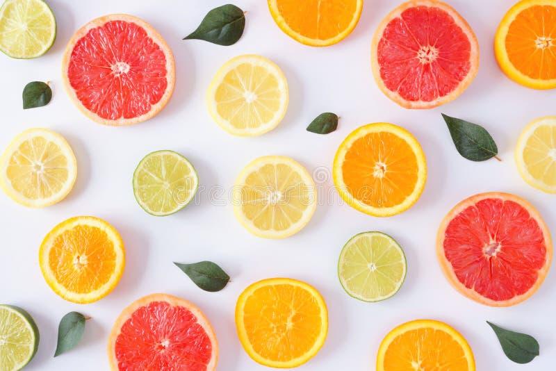 Färgrik fruktmodell av citrusa skivor och sidor, bästa sikt över en vit bakgrund fotografering för bildbyråer